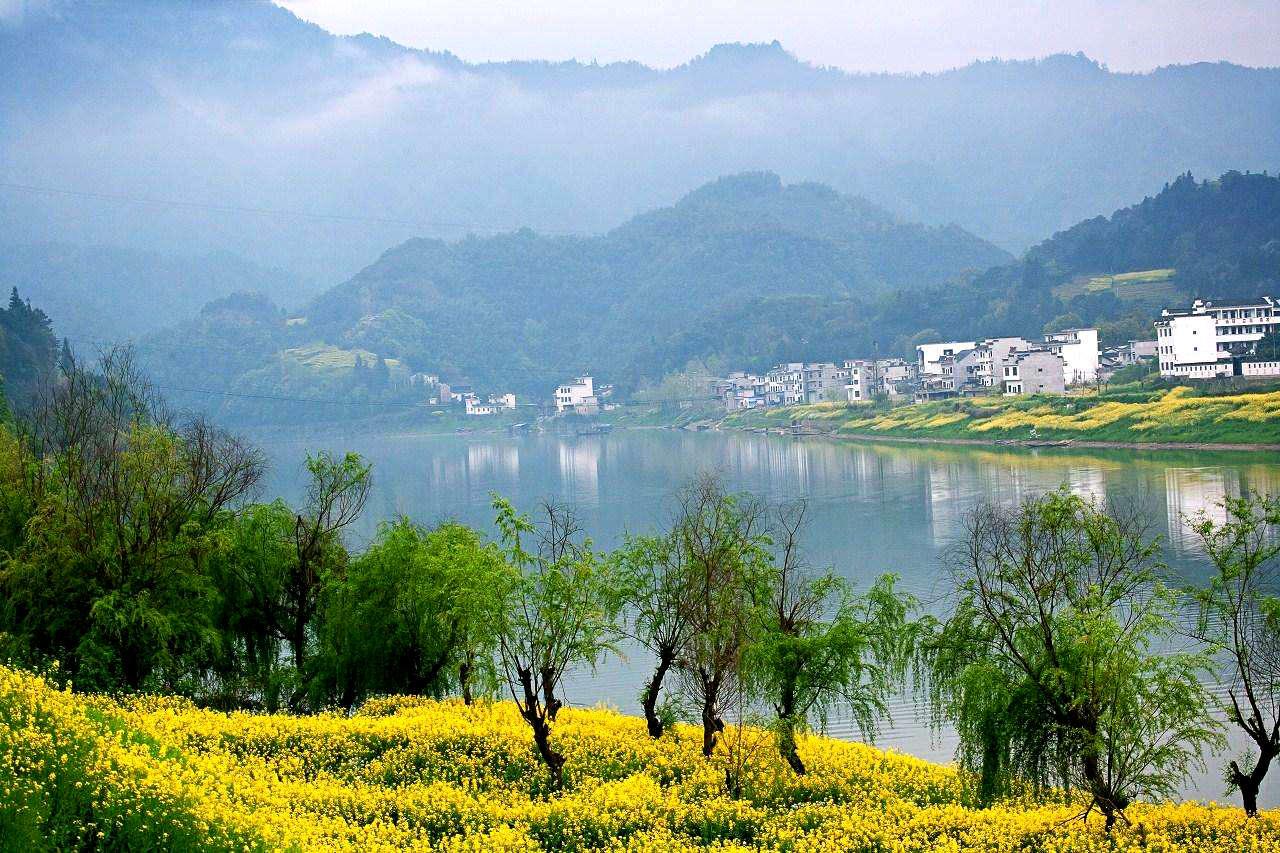 [外拍]3月婺源油菜花 黄山 千岛湖 上海外滩国内4地摄影采风